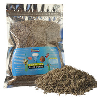 Australian Black Worm Freeze Dried 50g Loose
