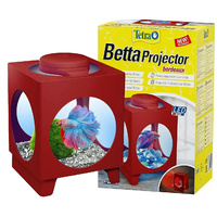 Tetra Betta Projector Bordeaux 1.8L Tank with bonus 5g TetraBetta Food